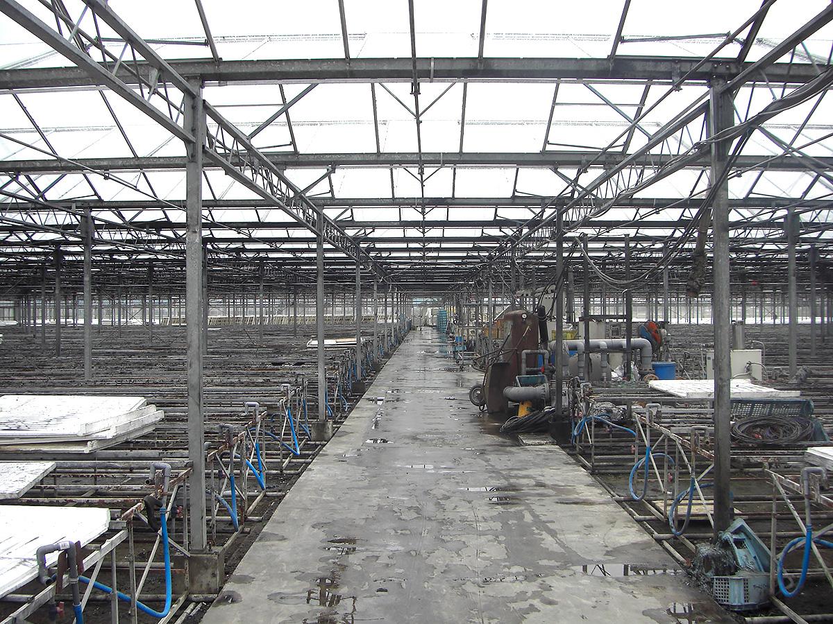 屋根洗浄 - 吉田農材 - 施工事例