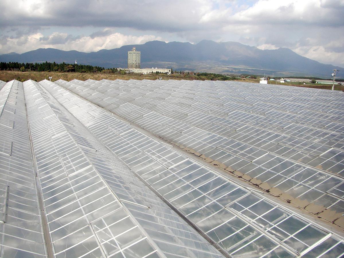屋根洗浄工事 - 吉田農材 - 施工事例