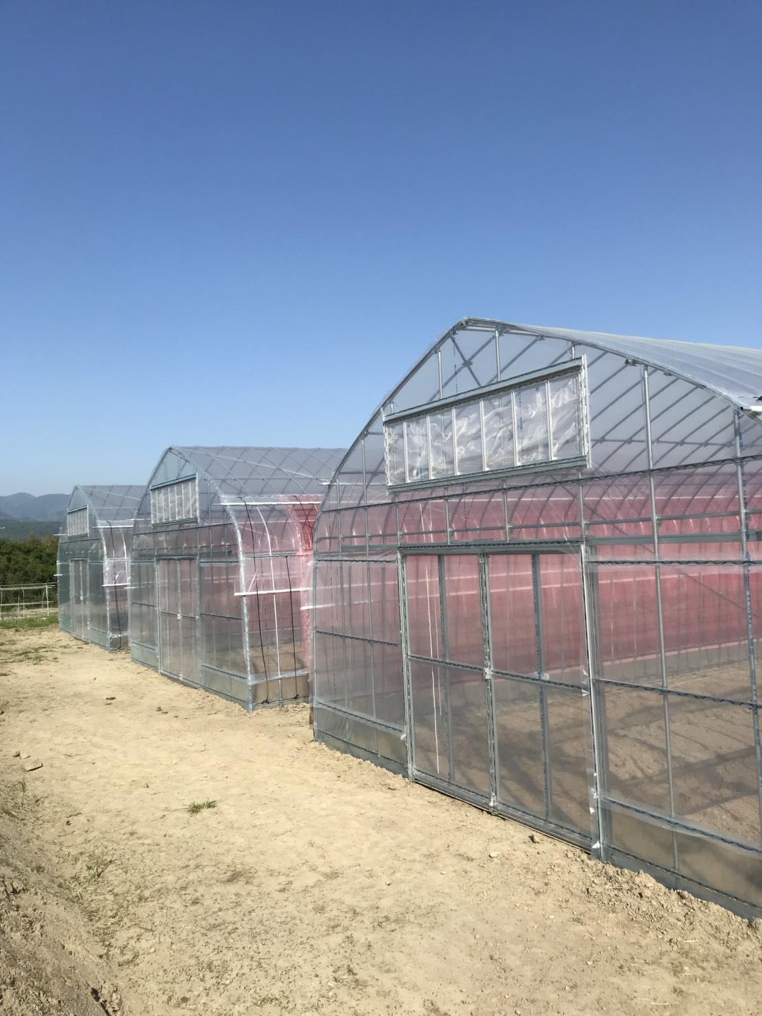 新規温室施工 - 吉田農材 - 施工事例
