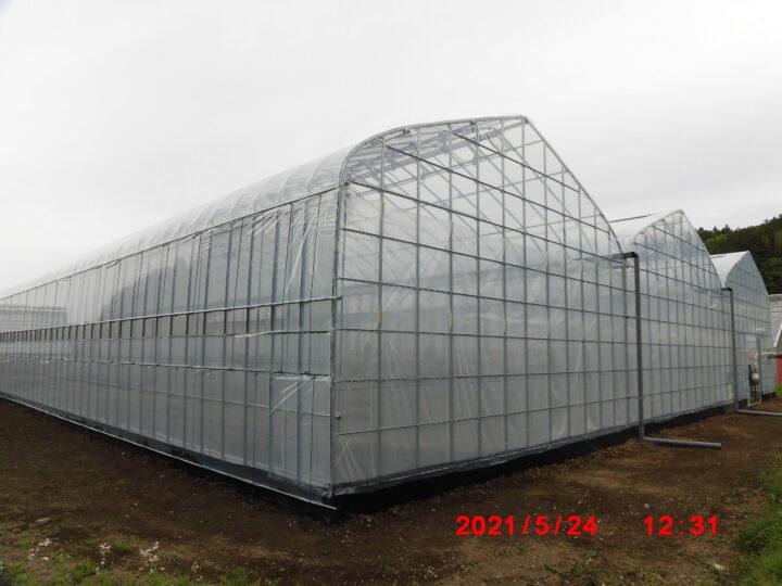新規温室施工(バナナ栽培)